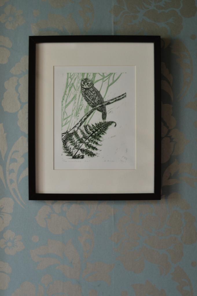 owl on wallpaper